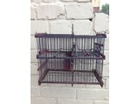 Canary Mule cage & trap
