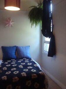 Room for rent in Glebe. Glebe Inner Sydney Preview