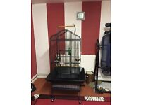 Rainforest Eagle Parrot Cage Dome Top Antique