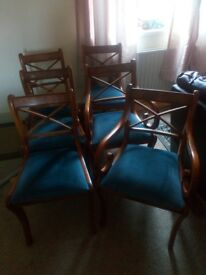6dining chairs wood with blue velvet seats