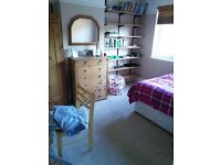 LARGE, BRIGHT ROOM IN SHARED HOUSE CLOSE TO SUSSEX UNI