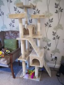 Cat climber activity set