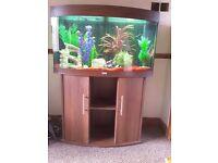 Aquarium Juwel vision 180 complete with lights ornaments