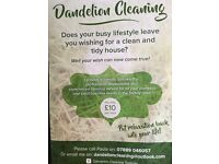 Dandelion Cleaning for all your domestic and small business needs