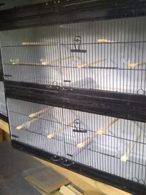 Bird cages for sale must go.