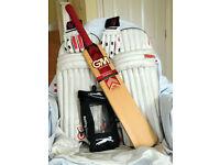 Cricket Equipment - bat, pads, gloves