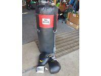 Punchbag and Gloves