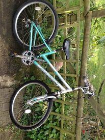 Falcon Horizon Ladies Comfort Bicycle