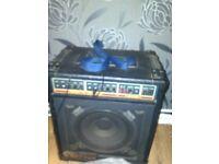 Hornet 45W Speaker/Amp