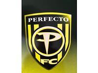 """Perfecto trance 12"""" records job lot"""