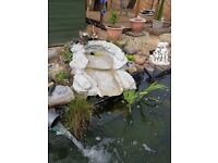 Pond water fall