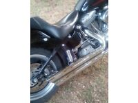 Harley davidson softtail custom 2004