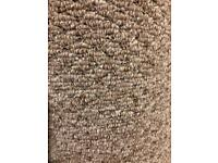Brand New Carpet Roll - great for box room!