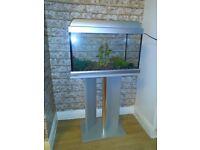 Stunning stylish fish tank with stand.
