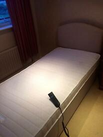 Eden healthcare electric bed