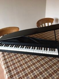 Korg Micro piano. Excellent condition, Natural Touch mini keyboard