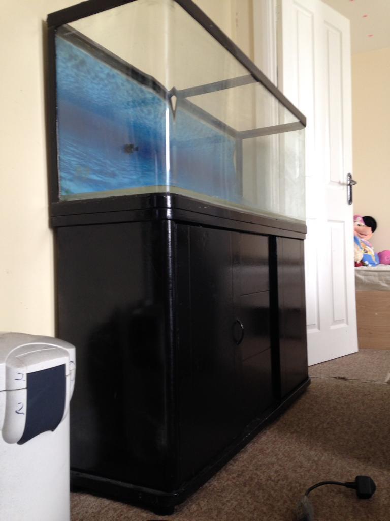 Aquarium fish tank northamptonshire - Sun Sun 4ft Fish Tank
