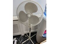 Fan for the summer