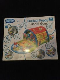 Playgro Musical Puppy Tunnel Gym