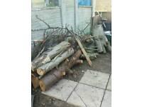 Logs/firewood