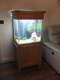 Aqua Oak 'Large Cube' Aquarium/Fish Tank and Cabinet - 155 Litres (AQ65C)
