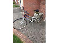 Ladies Raliegh Pioneer, 12 speed bike