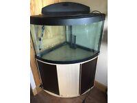 Selling big fish tank