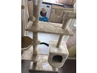 Cat hotel climbing frame