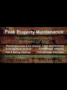 Snow Removal and Ice Melt Peterborough Peterborough Area image 1