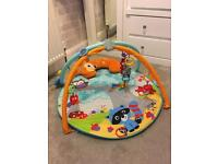 Fisher Price Deluxe Playmat