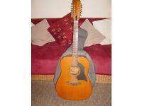 Guitar. 12 String Acoustic. Model KV28.