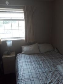 Lovely Cozy Double Room to let in dog friendly house