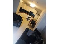 2 bedroom open planed apartment