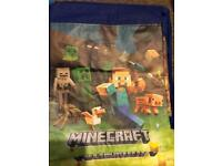 Minecraft swim/pe/school bags