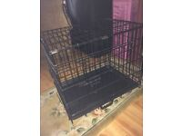 New puppy cage