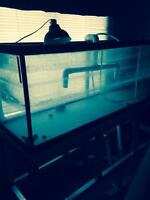 130 gallon fish tank