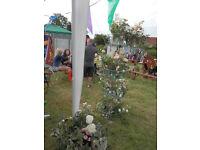 Metal Display Unit, Shop, Flowers, Wedding etc.