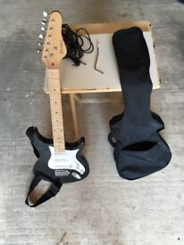 Basic electric guitar, carry bag, leads and whammy bar