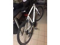 GT push bike