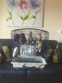 Bird/Parrot cage for sale!