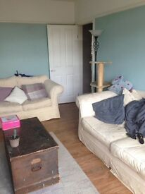 ***** available now ***** One double bedroom available in ground floor flat including bills