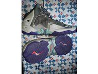 Lebron james basketball boots 10.5