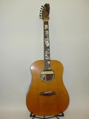 Blueberry Custom Made Acoustic Guitar w/ Original Case