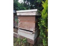 Honey bee hives with bee colony