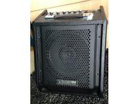 Kinsman drum amp