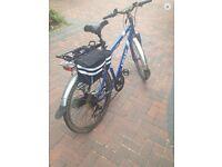 Izip electric mountain bike