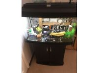 120 Litre Fish Tank with stand + all equipment