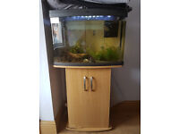 fish tank + stand for sale