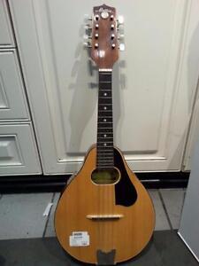 Montana Mandolin. We sell used instruments. (#34213)