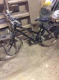Apollo bicycle